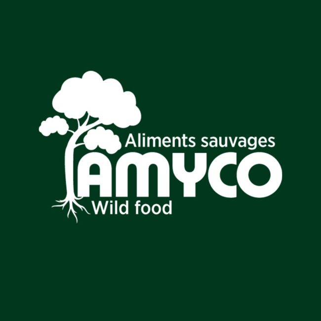 Amyco nouveau logo